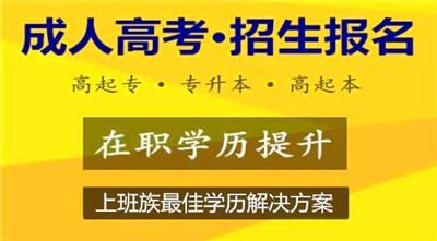 2020年广东成人高考招生层次